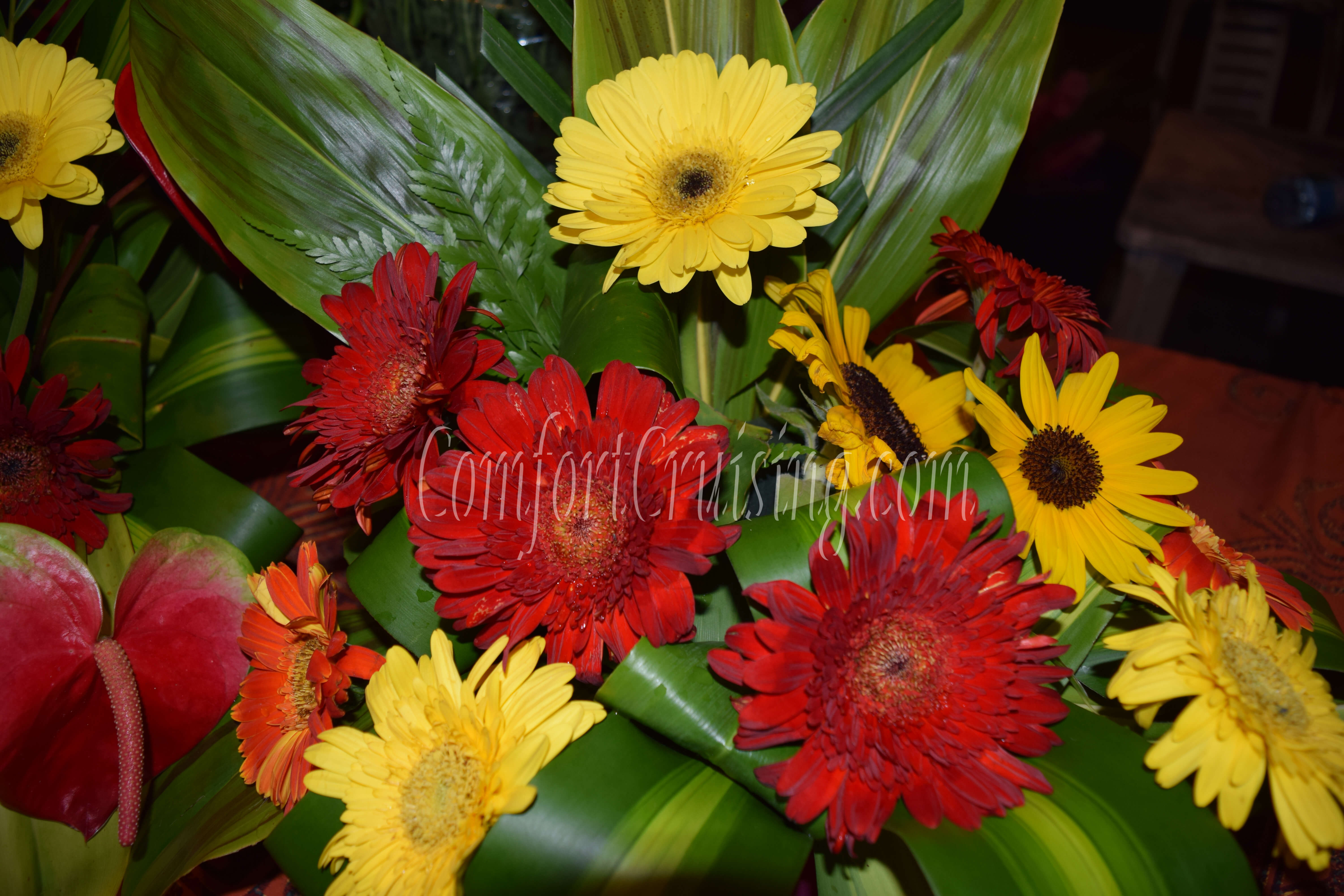 Yellow And Red Gerber Daisy Tropical Flower Arrangement For The Day